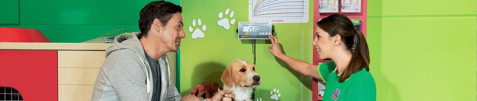 Que ce soit dans votre animalerie de Toulouse ou d'ailleurs, les équipes de Maxi Zoo sont disponibles et compétentes